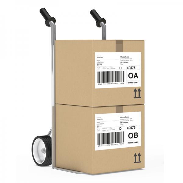 etichetta dato variabile logistica